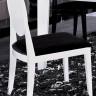 AA018 Modern White/Black Lacquer Chair